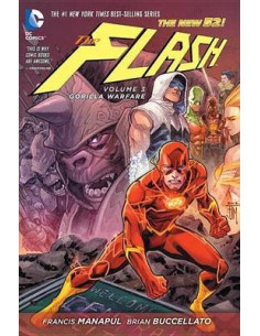 The Flash Vol 3
