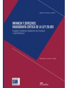 Infancia Y Derechos *radiografia Critica De La Ley 26.0612